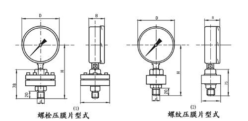 耐震隔膜压力表形式